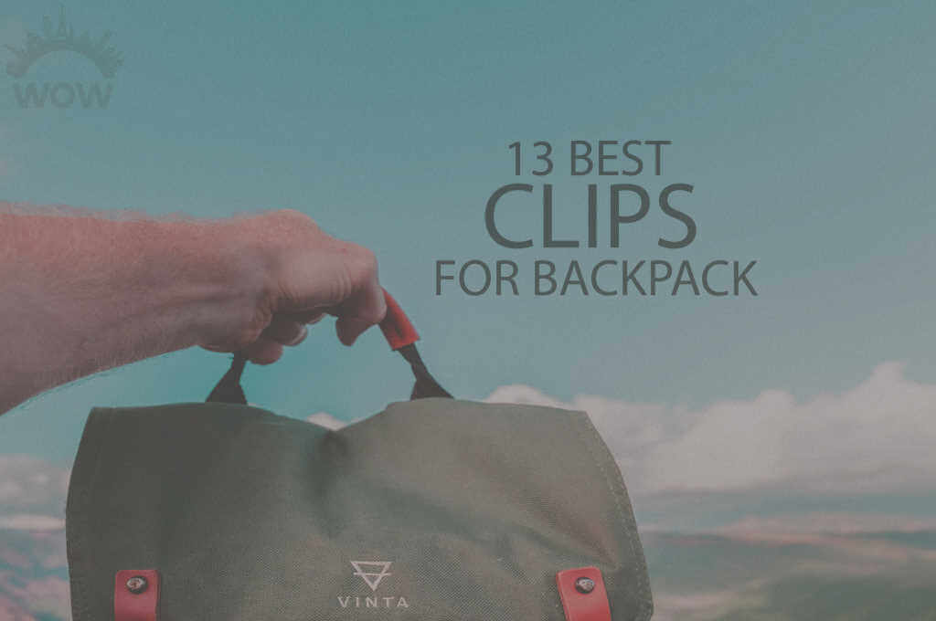 13 Best Clips for Backpack