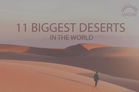 11 Biggest Deserts In The World