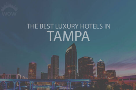 11 Best Luxury Hotels in Tampa